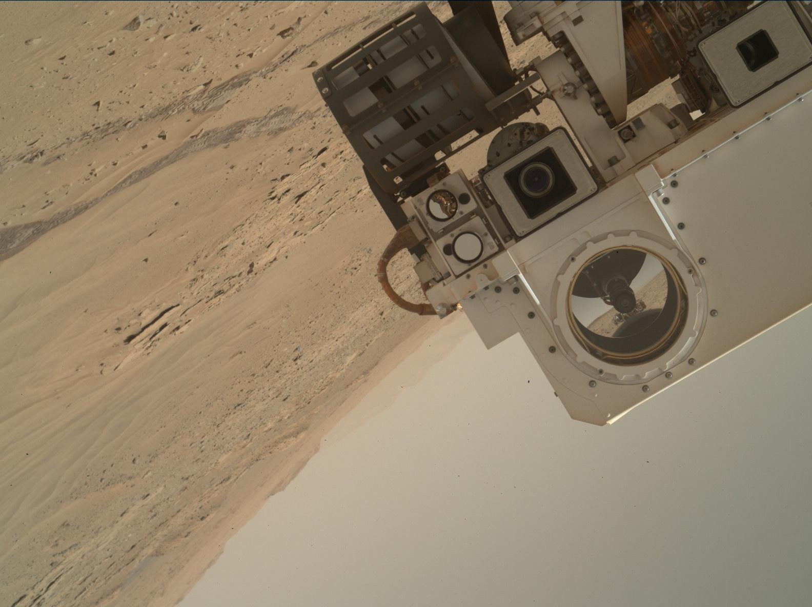 Rover's selfie